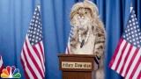 Watch Late Night with Jimmy Fallon Season  - Audience Suggestion Box: Adam Sandler Minions, Cat Politicians Online