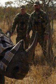 Battleground Rhino Wars