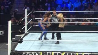 Watch WWE Elimination Chamber 2013 Season 2013 Episode 6 - Divas Championship M... Online