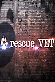 Rescue Vet