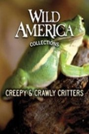 Wild America: Creepy & Crawly Critters Collection