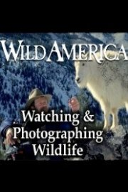 Wild America, Watching & Photographing Wildlife Collection