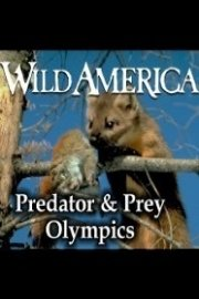 Wild America, Predator & Prey Olympics Collection