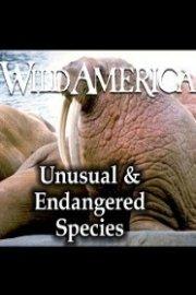 Wild America, Unusual & Endangered Species Collection