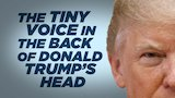 Watch Late Night with Seth Meyers - The Tiny Voice in the Back of Donald Trump's Head: Week of July 30 Online