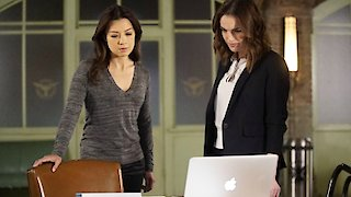 Watch Marvel's Agents of S.H.I.E.L.D. Season 3 Episode 14 - Watchdogs Online