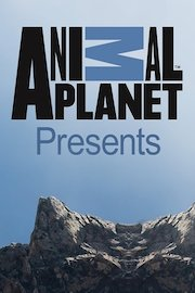 Animal Planet Specials