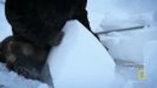 Watch Life Below Zero Season 7 Episode 18 - Shelter From the Sto... Online