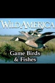 Wild America, Game Birds & Fishes Collection
