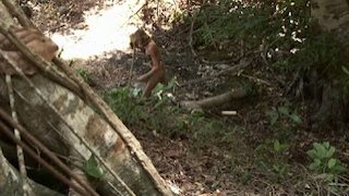 Watch Naked and Afraid Season 6 Episode 7 - Contamination Online