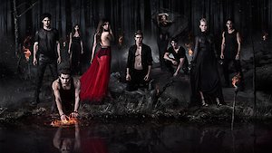 Watch The Vampire Diaries Season 8 Episode 7 - The Next Time I Hurt... Online