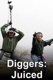 Diggers: Juiced