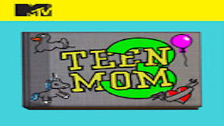Watch Teen Mom 3 Season 1 Episode 15 - Finale Special - Che... Online