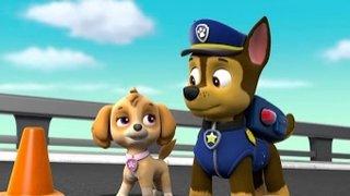 Watch Paw Patrol Season 5 Episode 1 - Pups Find a Genie/Pu... Online
