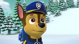 Watch Paw Patrol Season 6 Episode 5 - Pups Bear-ly Save Da... Online