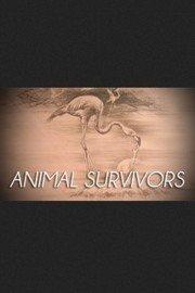Animal Survivors