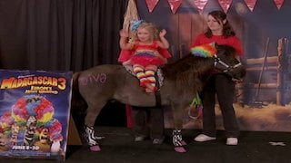 Watch Toddlers and Tiaras Season 8 Episode 9 - Me & My Pet: Tenness... Online