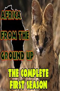 Africa from the Ground Up