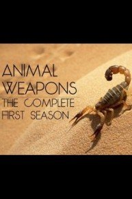 Animal Weapons