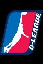 NBA D-League Basketball
