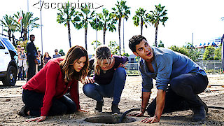 Watch Scorpion Season 4 Episode 11 - Who Let the Dog Out ...Online