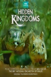 Mini Monsters: Hidden Kingdoms