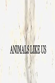 Animals Like Us
