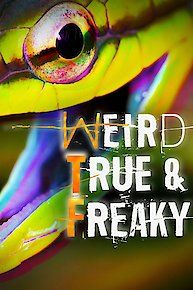 Weird, True & Freaky