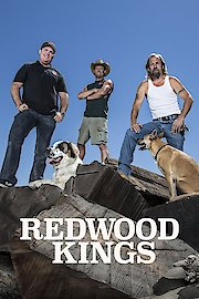 Redwood Kings