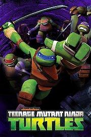 Teenage Mutant Ninja Turtles, Leo: Plan of Attack