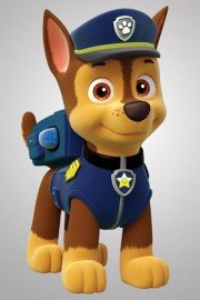 PAW Patrol, Chase On the Case