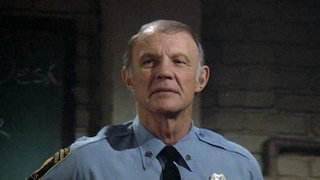 Watch Hill Street Blues Season 3 Episode 17 - The Belles of St. Ma... Online