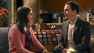 Watch The Big Bang Theory Season 9 Episode 11 - The Opening Night Ex... Online
