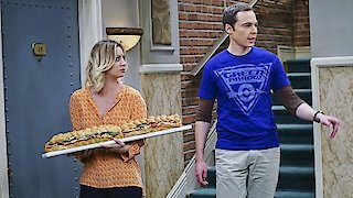 Watch The Big Bang Theory Season 9 Episode 21 - The Viewing Party Co... Online