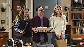 Watch The Big Bang Theory Season 10 Episode 4 - The Cohabitation Exp... Online
