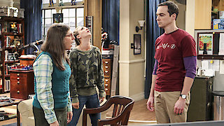 Watch The Big Bang Theory Season 10 Episode 5 - The Hot Tub Contamin... Online