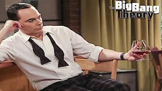 Watch The Big Bang Theory Season 10 Episode 8 - The Brain Bowl Incub... Online