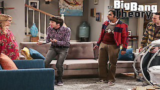 Watch The Big Bang Theory Season 10 Episode 10 - The Property Divisio... Online