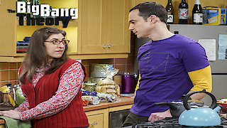 Watch The Big Bang Theory Season 10 Episode 17 - The Comic-Con Conund... Online