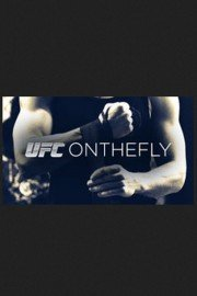 UFC on the Fly