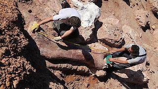 Watch Nature Season 34 Episode 11 - Raising the Dinosaur... Online