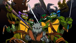 Watch Teenage Mutant Ninja Turtles Season 10 Episode 5 - Turtles to the Secon... Online