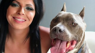 Watch Pit Bulls and Parolees Season 11 Episode 3 - The Dogs Who Made Us...Online