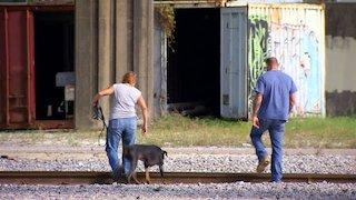 Watch Pit Bulls and Parolees Season 8 Episode 19 - Behind Bars Online