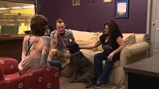 Watch Pit Bulls and Parolees Season 8 Episode 21 - The Incomparable Dr.... Online