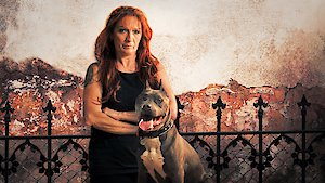 Watch Pit Bulls and Parolees Season 8 Episode 24 - Never Meant Harm Online