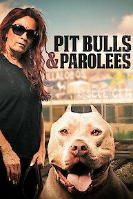 Pit Bulls and Parolees