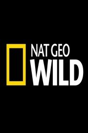 National Geographic: Wild