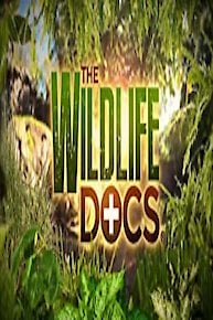 The Wildlife Docs