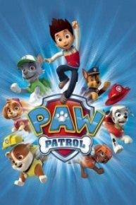 PAW Patrol, Skye Has Got to Fly!
